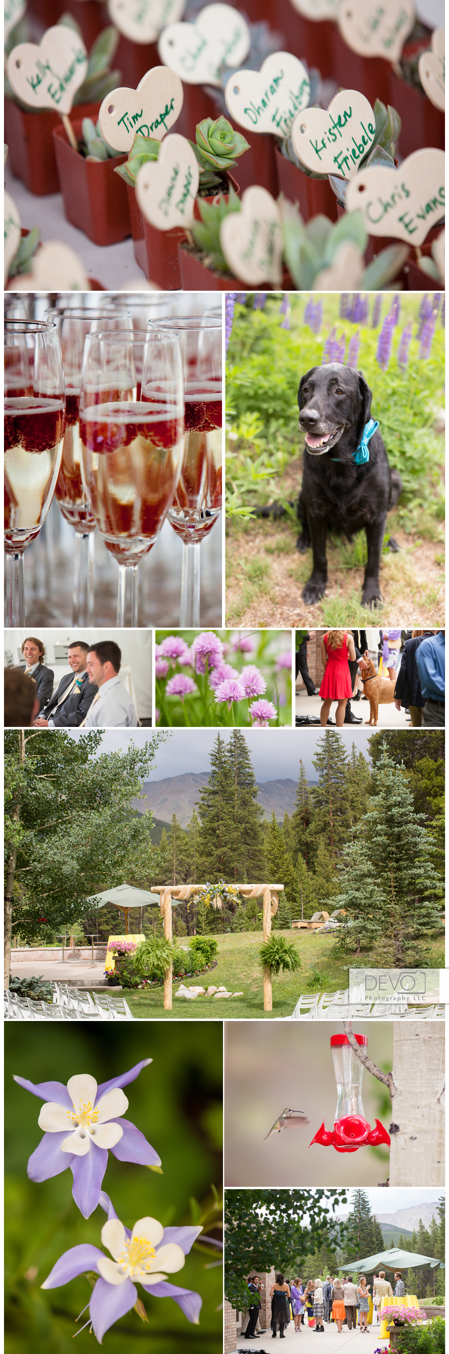 colorado summer rain visits a backyard wedding in breckenridge